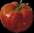 tomato_paint